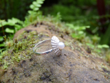 Katia Kolinger Jewelry – Prsten - mušle z Dominical, Kostarika / The Ring- a shell from Dominical, Costa Rica – 8
